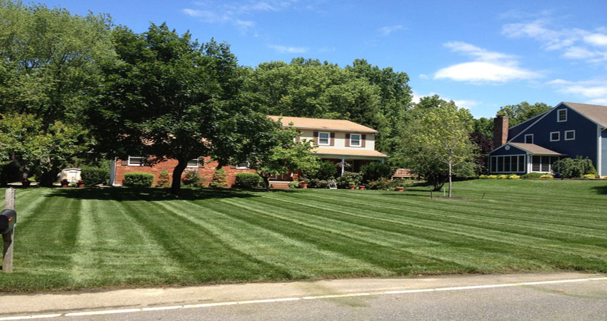 Mullica Hill NJ lawn care seeding thatch aerate